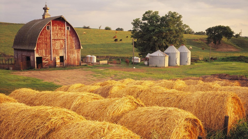 Bales of hay on an Iowa farm: Americans have the freedom to live wherever we want, to own a small business, to march to our own drummer and dance to our own tune.